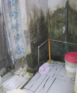 latrine2